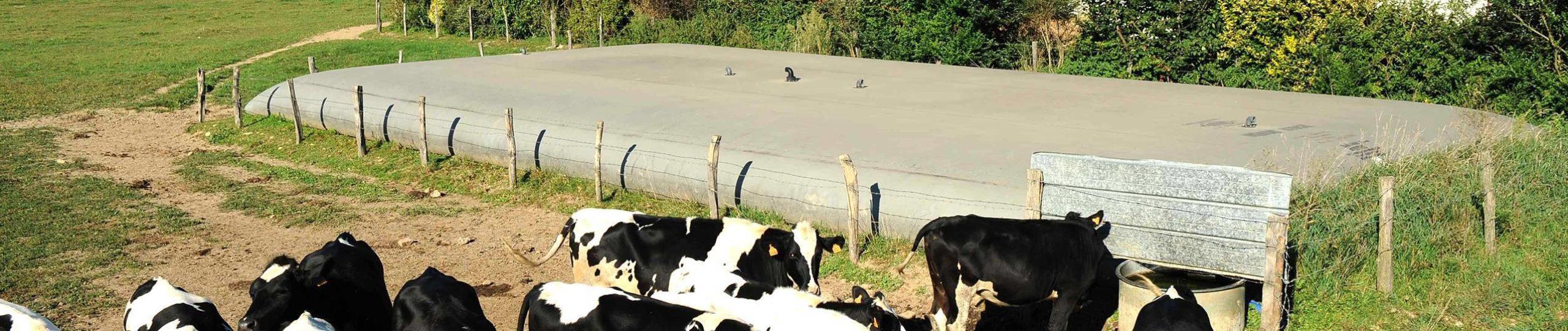 ban_application_effluents_agricoles